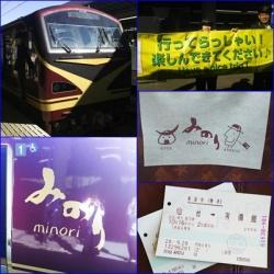 みのり、リゾート列車